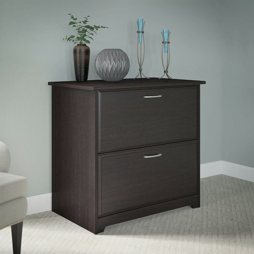 Bush Furniture Cabot Oak Lateral File Cabinet with 2 Drawer